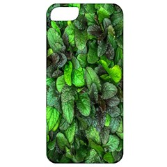 The Leaves Plants Hwalyeob Nature Apple Iphone 5 Classic Hardshell Case