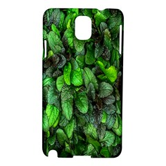 The Leaves Plants Hwalyeob Nature Samsung Galaxy Note 3 N9005 Hardshell Case