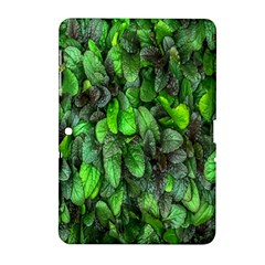 The Leaves Plants Hwalyeob Nature Samsung Galaxy Tab 2 (10 1 ) P5100 Hardshell Case