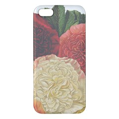 Flowers 1776434 1280 Apple Iphone 5 Premium Hardshell Case