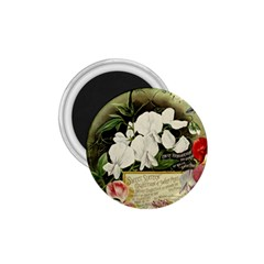 Flowers 1776617 1920 1 75  Magnets