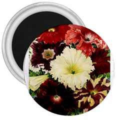 Flowers 1776585 1920 3  Magnets