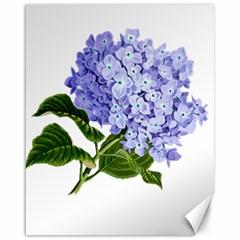 Flower 1775377 1280 Canvas 16  X 20