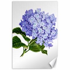 Flower 1775377 1280 Canvas 24  X 36