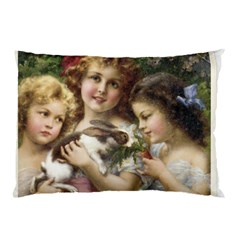 Vintage 1501558 1280 Pillow Case (two Sides)