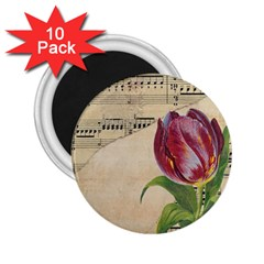 Tulip 1229027 1920 2 25  Magnets (10 Pack)