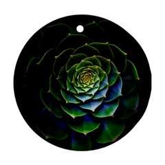Nature Desktop Flora Color Pattern Ornament (round)