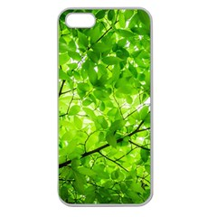 Green Wood The Leaves Twig Leaf Texture Apple Seamless Iphone 5 Case (clear)