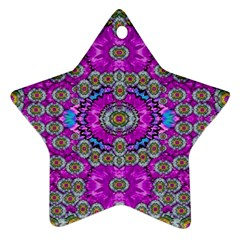 Spring Time In Colors And Decorative Fantasy Bloom Ornament (star)