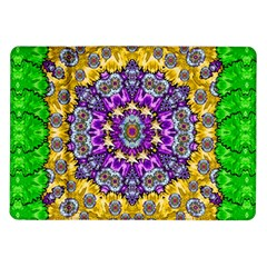 Sunshine In Mind The Season Is Decorative Fine Samsung Galaxy Tab 10 1  P7500 Flip Case