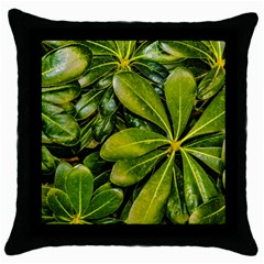 Top View Leaves Throw Pillow Case (black)