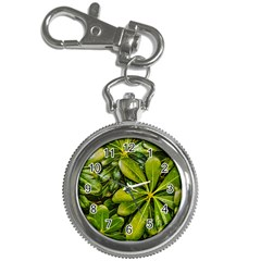Top View Leaves Key Chain Watches