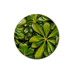 Top View Leaves Rubber Round Coaster (4 Pack)