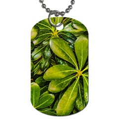 Top View Leaves Dog Tag (one Side)