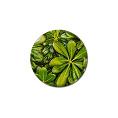 Top View Leaves Golf Ball Marker (4 Pack)