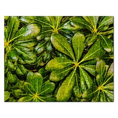 Top View Leaves Rectangular Jigsaw Puzzl
