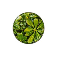 Top View Leaves Hat Clip Ball Marker (10 Pack)