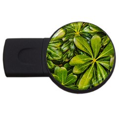 Top View Leaves Usb Flash Drive Round (4 Gb)