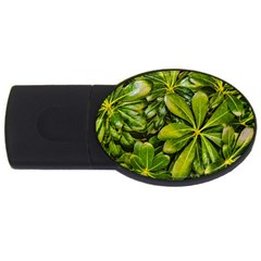 Top View Leaves Usb Flash Drive Oval (4 Gb)