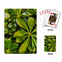 Top View Leaves Playing Card