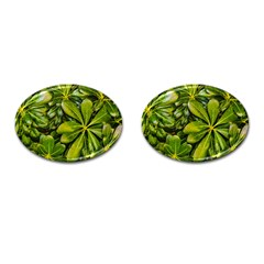 Top View Leaves Cufflinks (oval)
