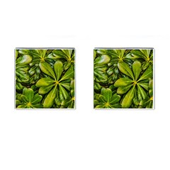 Top View Leaves Cufflinks (square)