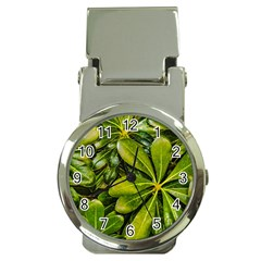 Top View Leaves Money Clip Watches
