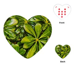 Top View Leaves Playing Cards (heart)