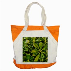 Top View Leaves Accent Tote Bag