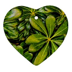 Top View Leaves Heart Ornament (two Sides)