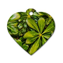 Top View Leaves Dog Tag Heart (one Side)