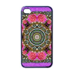 Roses In A Color Cascade Of Freedom And Peace Apple Iphone 4 Case (black)
