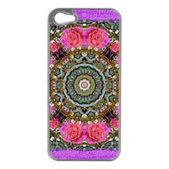 Roses In A Color Cascade Of Freedom And Peace Apple Iphone 5 Case (silver)