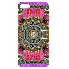 Roses In A Color Cascade Of Freedom And Peace Apple Iphone 5 Hardshell Case With Stand