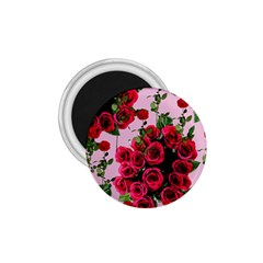 Roses Pink 1 75  Magnets