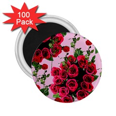 Roses Pink 2 25  Magnets (100 Pack)