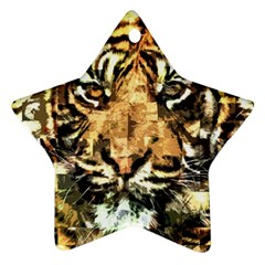 Tiger 1340039 Ornament (star)
