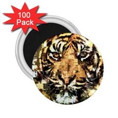 Tiger 1340039 2 25  Magnets (100 Pack)