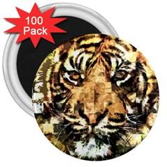 Tiger 1340039 3  Magnets (100 Pack)