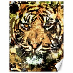 Tiger 1340039 Canvas 12  X 16