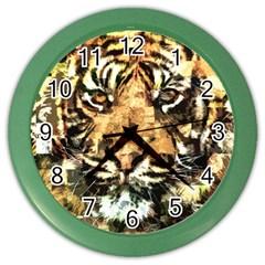 Tiger 1340039 Color Wall Clocks