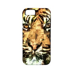 Tiger 1340039 Apple Iphone 5 Classic Hardshell Case (pc+silicone)