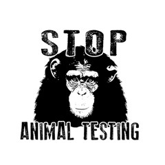 Stop Animal Testing   Chimpanzee  Magic Photo Cubes