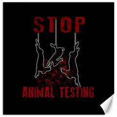Stop Animal Testing   Rabbits  Canvas 12  X 12