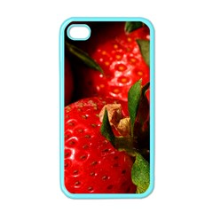 Red Strawberries Apple Iphone 4 Case (color)
