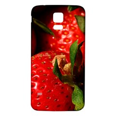 Red Strawberries Samsung Galaxy S5 Back Case (white)