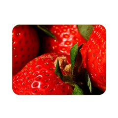 Red Strawberries Double Sided Flano Blanket (mini)