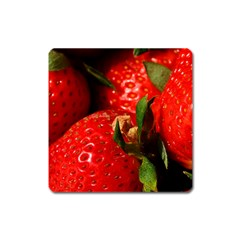 Red Strawberries Square Magnet