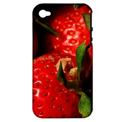 Red Strawberries Apple Iphone 4/4s Hardshell Case (pc+silicone)