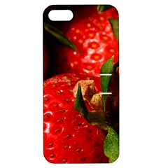 Red Strawberries Apple Iphone 5 Hardshell Case With Stand